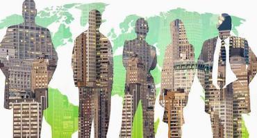 Бакалавриат: Менеджмент / Менеджмент организации