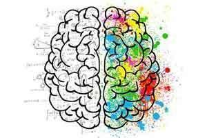 Как заставить себя регулярно учиться: секреты нейропластичности